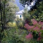 altra foto della casa dal boschetto